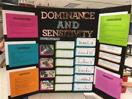 Science Fair Support Page Dallastown Area Middle School