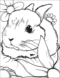 Baby Rabbit Coloring Pages