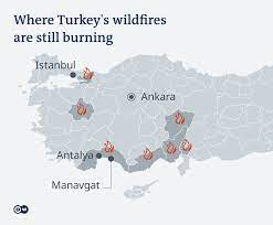 Turkey wildfires: Erdogan declares coastal regions ′disaster areas′   News    DW