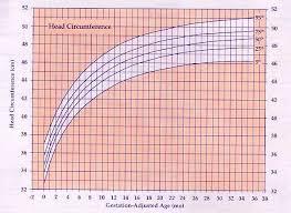 Premature Infant Girls Head Circumference Chart Premature