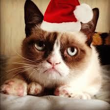grumpy cat christmas hat. Brilliant Grumpy Grumpy Cat Christmas Hat And F