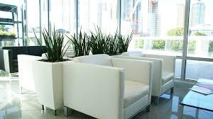 office indoor plants. Indoor Office Plant - Plants In Prestigious Plantscapes
