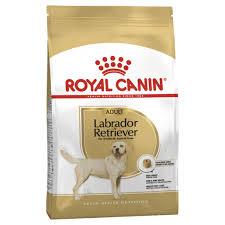 <b>Royal Canin Labrador Retriever</b> Adult » RSPCA Petville