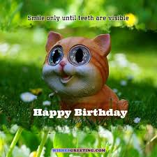 Happy Birthday Funny Quotes Interesting 48 Funny Birthday Wishes And Messages WishesGreeting