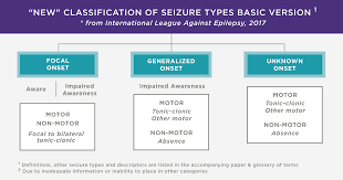 Seizures And Epilepsy Frequently Asked Questions Brainline