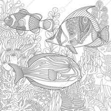 21 Best Fish Zentangle Images Animal Coloring Pages Coloring Book