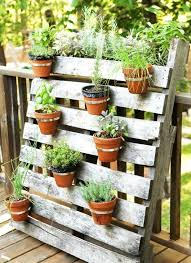 herb containers fall container gardening ideas potted plant we love small garden storage containers herb containers