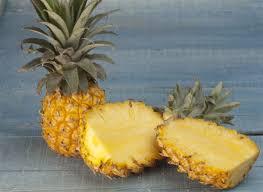 """Résultat de recherche d'images pour """"ananas"""""""