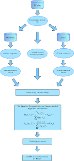 Lpi Score Chart The Workflow Chart Of Lpi Bnpra Download Scientific Diagram