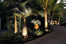 landscape lighting trees. Delighful Trees Palm Tree Solar Lights Landscape Lighting Fl Landscaping With Tropical Trees  Timber Inside Landscape Lighting Trees O