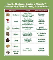 30 Rare Medicinal Mushroom Chart