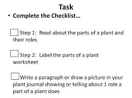 Let's Talk Plants Angelica Orantez 1 st grade Science. - ppt download