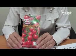 <b>Томат Иваныч F1</b>: описание сорта, отзывы, урожайность, фото