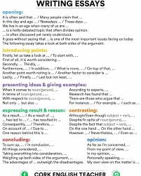 learning to write essays in english a simple guide to essays english writing learn english