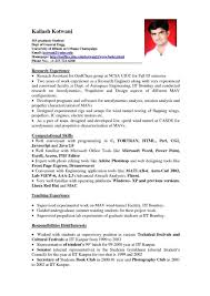 Examples Of Resumes For College Students With No Job Experience