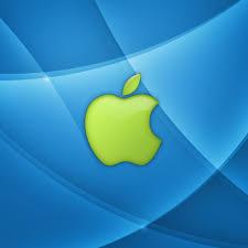 iPad mini Retina HD …