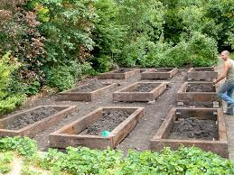 image of vegetable garden design ideas small