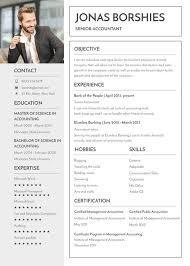Professional Resume Templates 2013 15 Professional Banking Resume Templates Pdf Doc Free