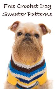 Free Crochet Dog Patterns Custom A Guide To The Best Free Crochet Dog Sweater Patterns By Pinterest