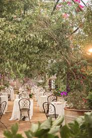 cascading greenery and fl transformed the grounds into a secret garden amongst the foliage where colourful lovebirds