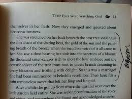 their eyes were watching god essay topics their eyes were watching god essay topics