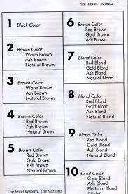Hair Bleach Level Chart