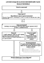Дипломная работа Внутригосударственные механизмы защиты прав и  Дипломная работа Внутригосударственные механизмы защиты прав и свобод человека в России и в Европейском Суде по правам человека ru