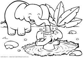 Free Safari Coloring Pages Comfy Jungle Animals Sheets Animal Draw