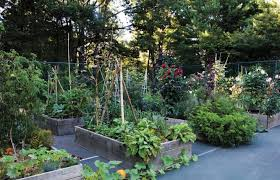 Small Picture Steal This Look An Old Tennis Court Turned Kitchen Garden