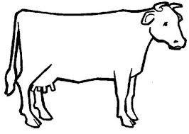 beef cow outline. Exellent Outline Cow Outline Intended Beef