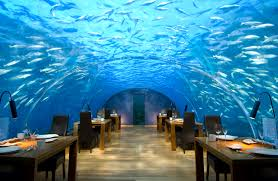 underwater restaurant disney world. Maldives-conrad-underwater-rest Underwater Restaurant Disney World N