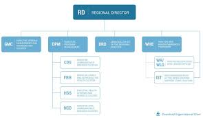 Home Care Agency Organizational Chart Organizational Structure Who Regional Office For Africa