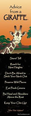40 Best Giraffe Quotes Images On Pinterest Giraffes Elephants And Magnificent Giraffe Quotes