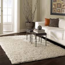 Living Room Area Rug Fresh Small Rugs Contemporary Decor Furniture