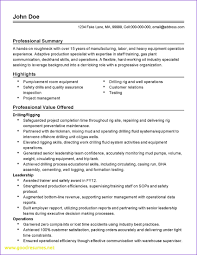 Fake Resume For A Job Best Of Luxury Resumes For Flight Attendants
