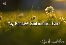 Monday Quotes Funny Custom 48 Inspirational Funny Monday Quotes TOP LIST