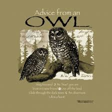 Owl Quotes For T Shirts. QuotesGram