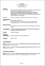 It Intern Resume Computer Science Internship Resume Template Business 74