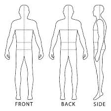 31 676 Human Body Outline Stock Vector Illustration And