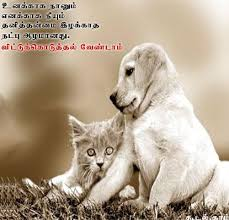 Friendship In Tamil Essay YouTube Inspiration Some Friendship Quotes In Tamil