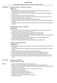 Internal Auditor Senior Resume Samples Velvet Jobs