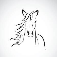 Paard Tekening Fotos Afbeeldingen En Stock Fotografie 123rf