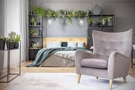 Die Richtige Zimmerpflanze Finden Hornbach