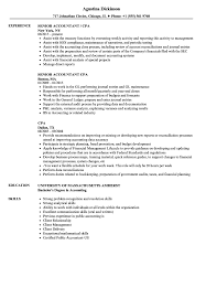 Cpa Resume CPA Resume Samples Velvet Jobs 2