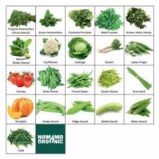 namma organic s 21 varieties of organic vegetable seeds for terrace and kitchen garden 1000 seeds