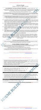 100 Sample Ceo Resumes Bad Resume Samples Bad Resume