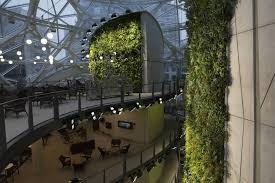 google office in seattle. Inside Amazon\u0027s Giant Spheres, Where Workers Will Chill In A Mini Rainforest Google Office Seattle