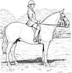 Раскраски лошадь с человеком