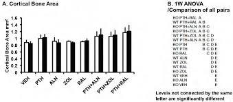 Maximizing PTH Anabolic Osteoporosis Therapy
