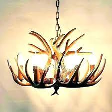 stag antler chandelier antlers lighting chandelier nice deer antler lights how to make a chandelier antlers